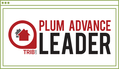 Plum Explore Icon