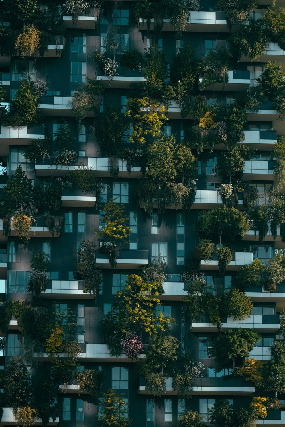 Close Up on Apartment Building